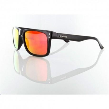 Goblin Black / Revo Sunglasses